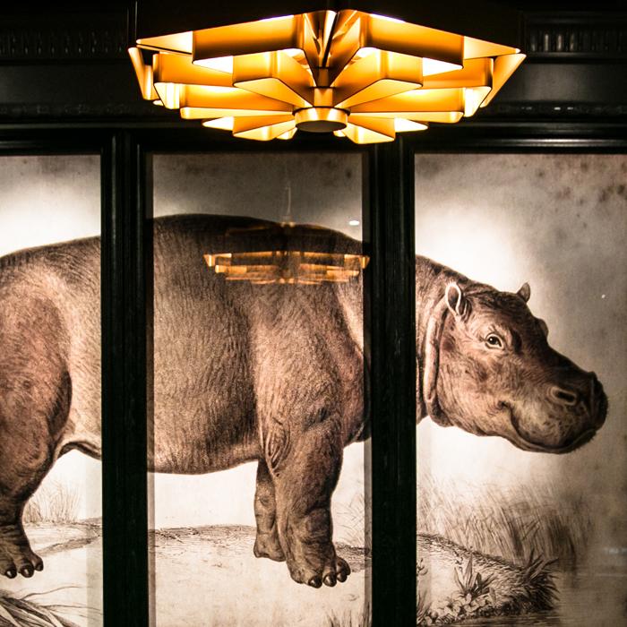 Wall art hippopotamus and modern lighting